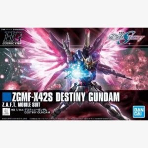 ZGMF-X425 Destiny Gundam RG 1:144 scale model